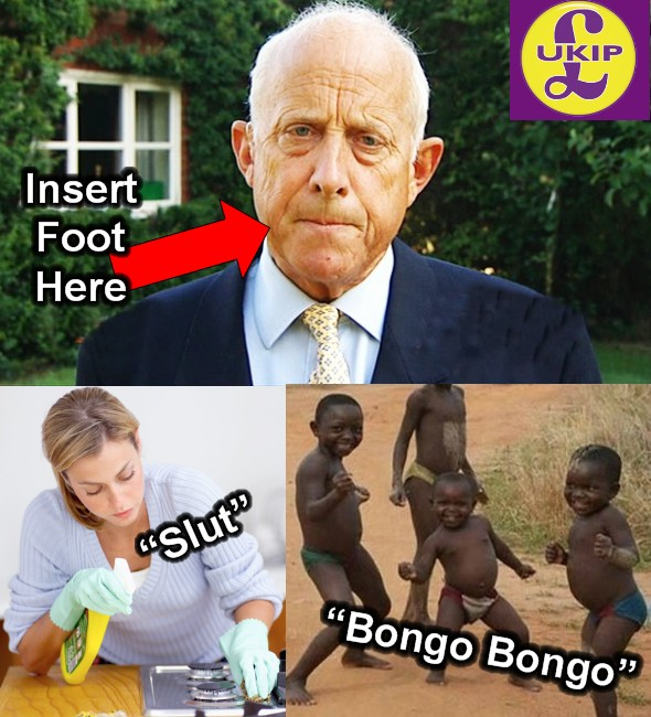 UKIP Godfrey Bloom sluts